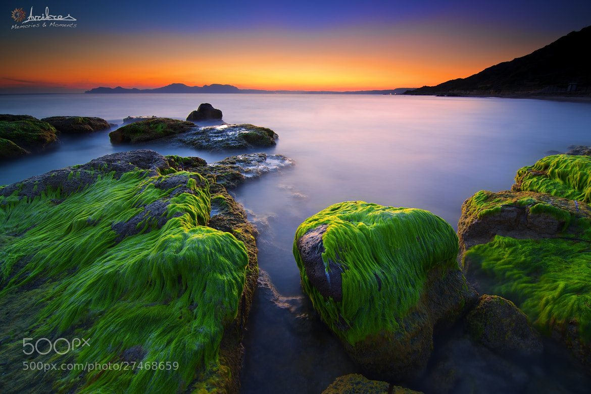 Photograph My nature green hair…! by AdithetoS μελουργός on 500px