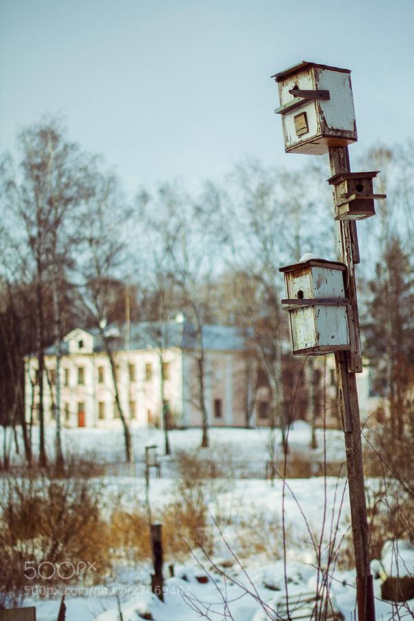 Photograph Untitled by Igor Scheglov on 500px