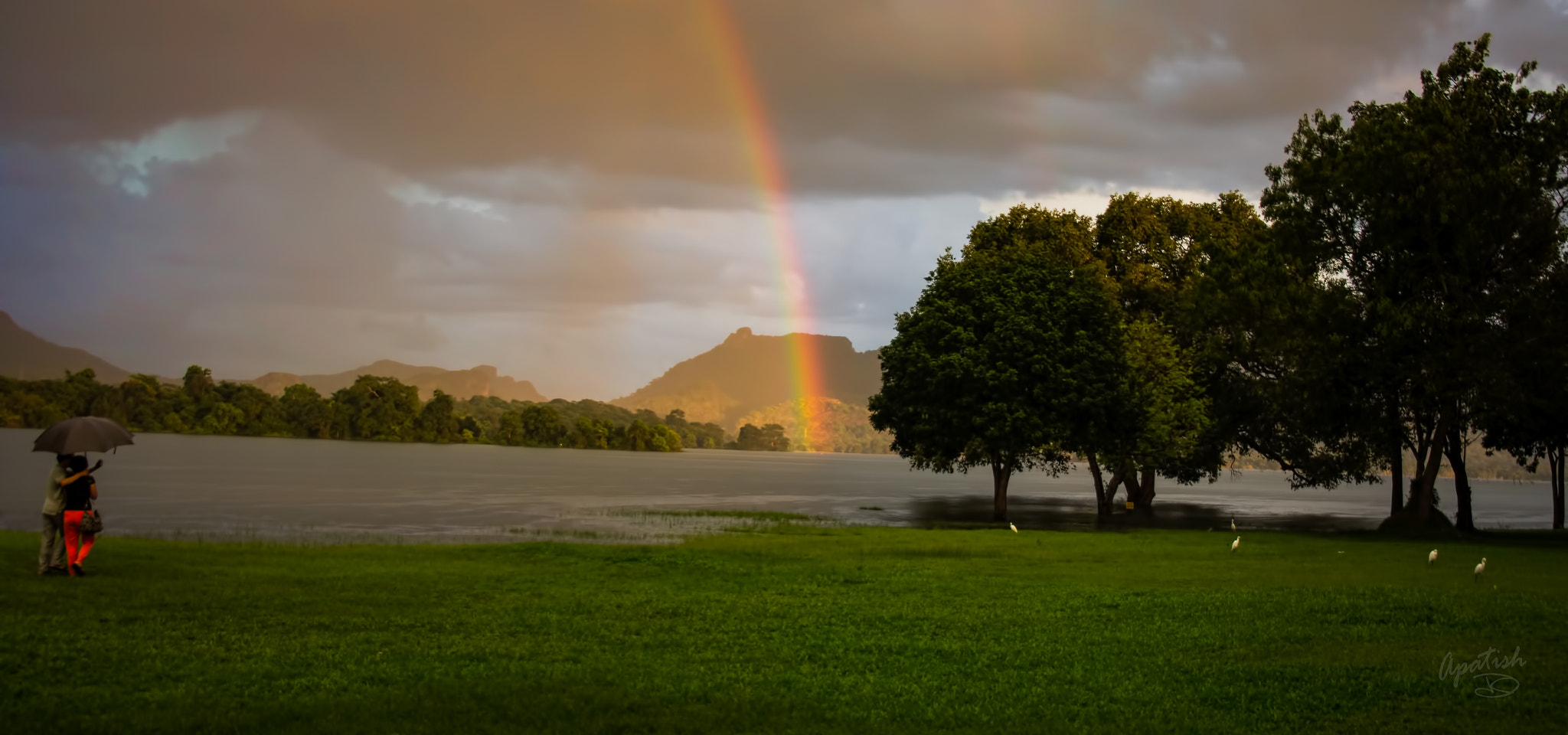 Photograph couples rainbow by Ariel Patish on 500px