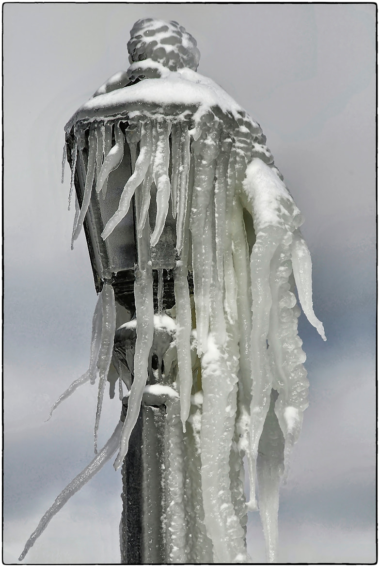 Photograph Ice Sculpture by John Barker on 500px