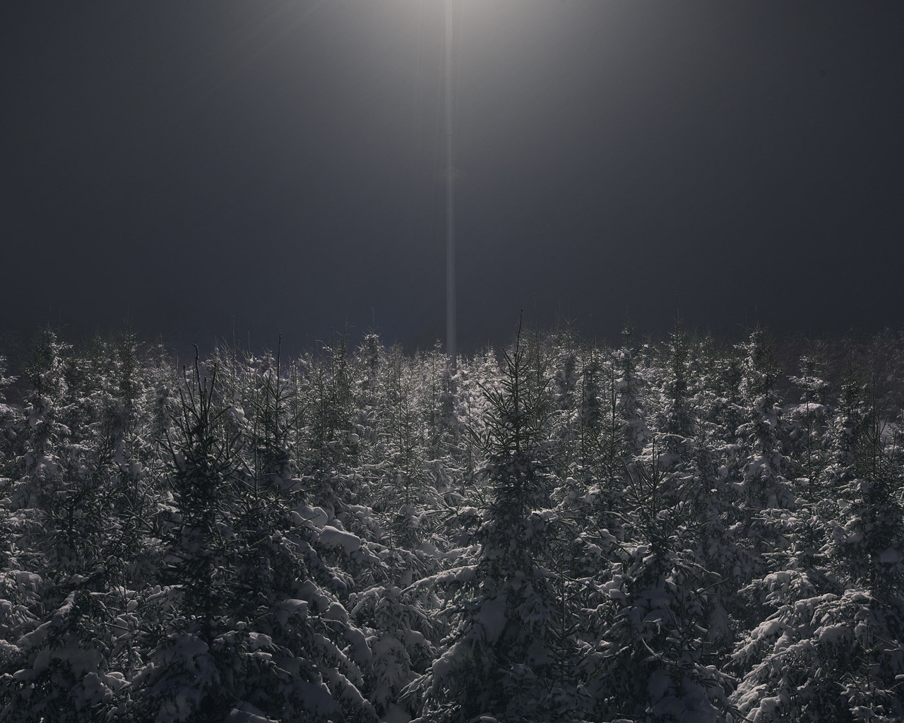 Photograph Untitled by Benoit  paille on 500px