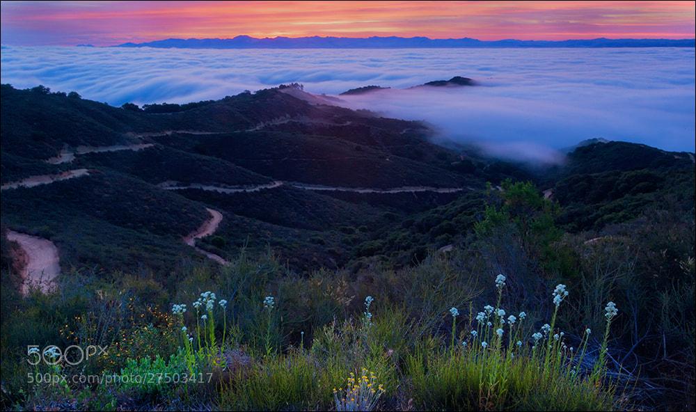 Photograph Santa Clara Valley Dawn by Don Smith on 500px