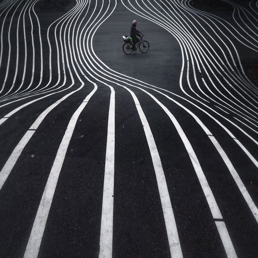 Lines lines lines  by Locarl  on 500px.com