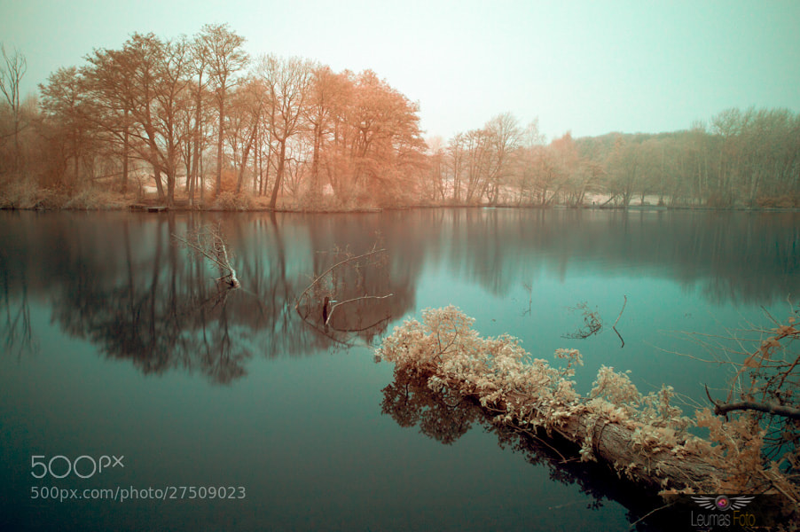 Photograph Lake section in Colour Infrared by Sam Bentley on 500px