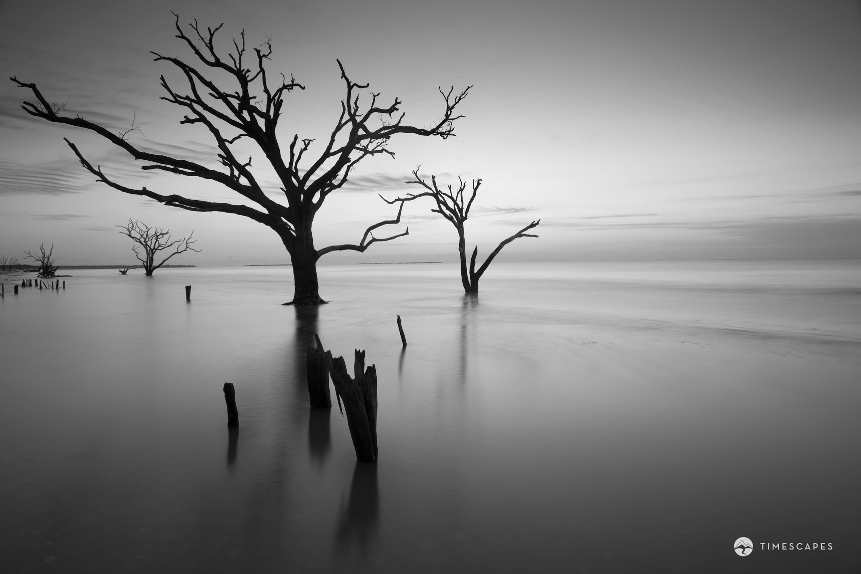 Photograph The Sound of Silence by Bernard Chen on 500px