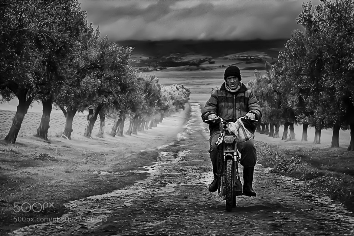 Photograph the beginning of path by Mohamed  El-mestiich Saadi  on 500px