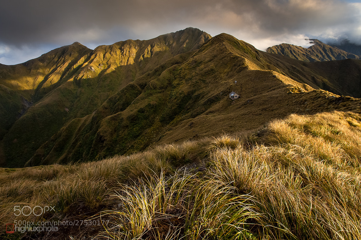 Photograph Tarn Ridge Hut by Mark Watson on 500px