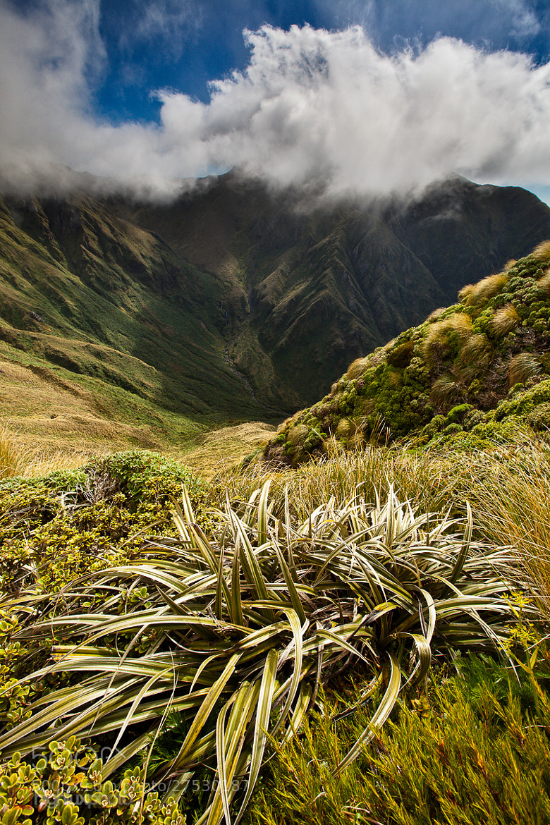 Photograph Mt Mitre, Tararua Range by Mark Watson on 500px