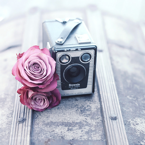Photograph Vintage Love by Joakim Kræmer on 500px