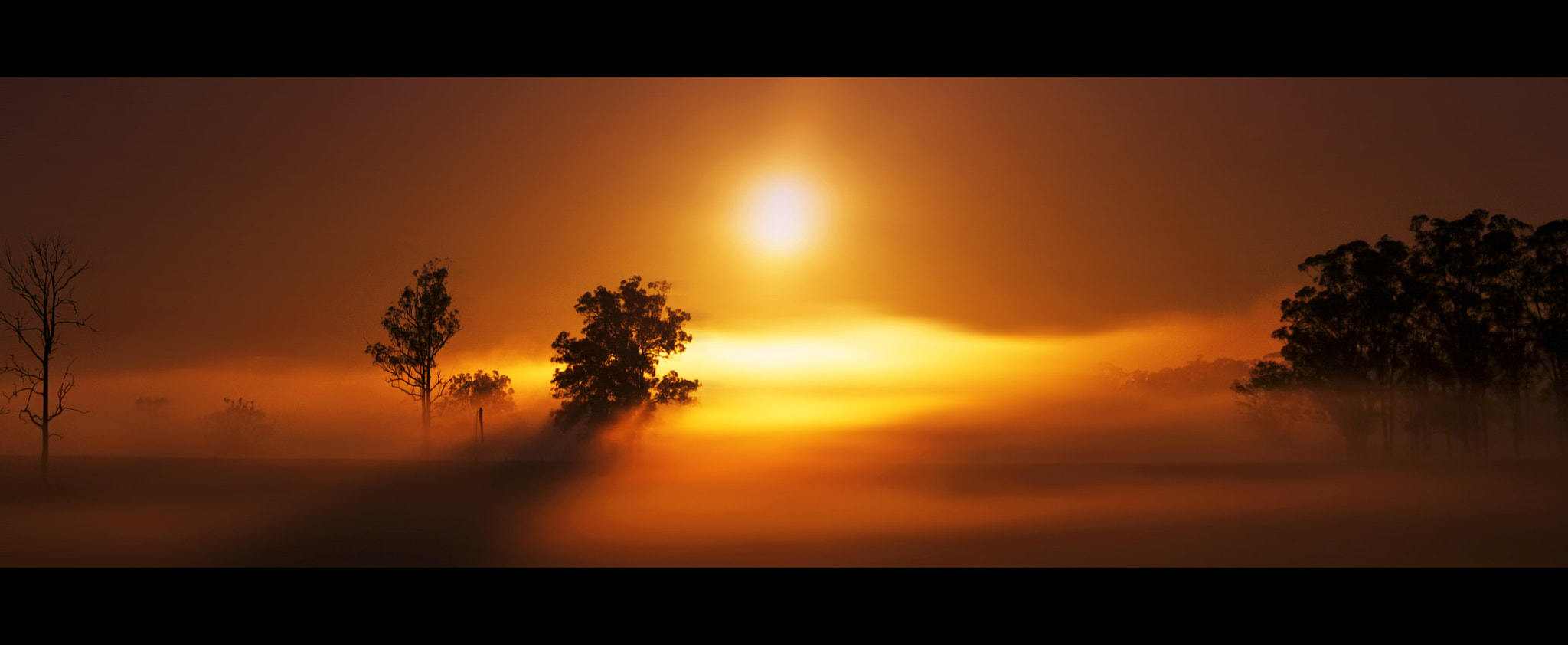 Photograph Burning Off The Fog || HAWKESBURY  by Rhys Pope on 500px