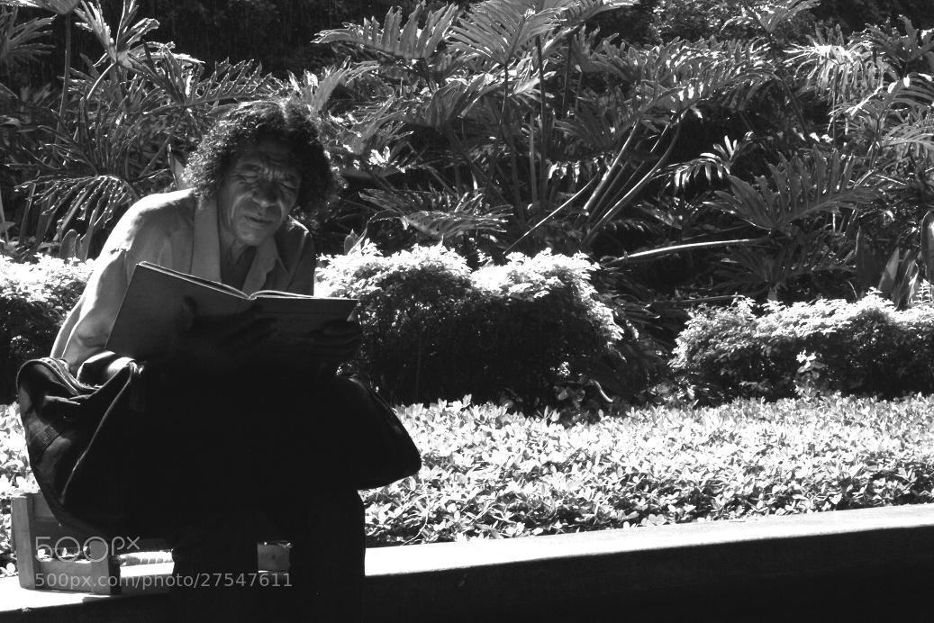 Photograph The man and his book in a big city by Rodrigo Capulleto on 500px