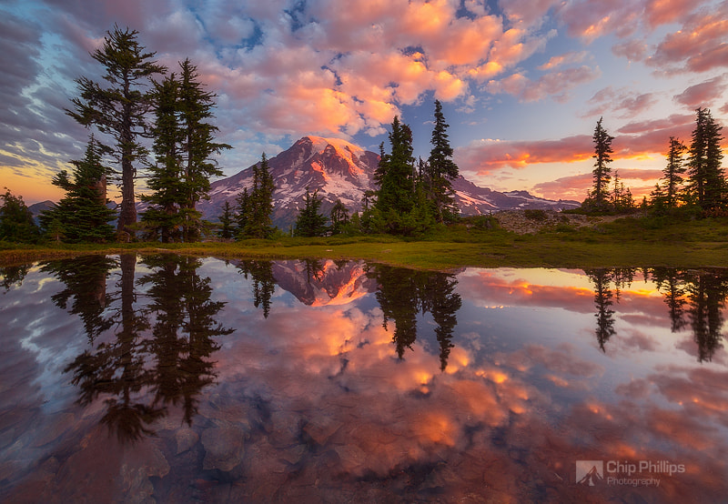Photograph Mount Rainier Tarn at Sunrise by Chip Phillips on 500px