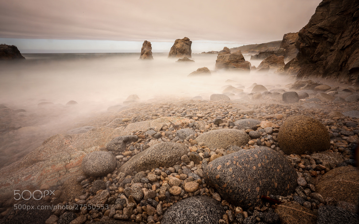 Photograph Garrapata Mists  by Jameson Savage on 500px