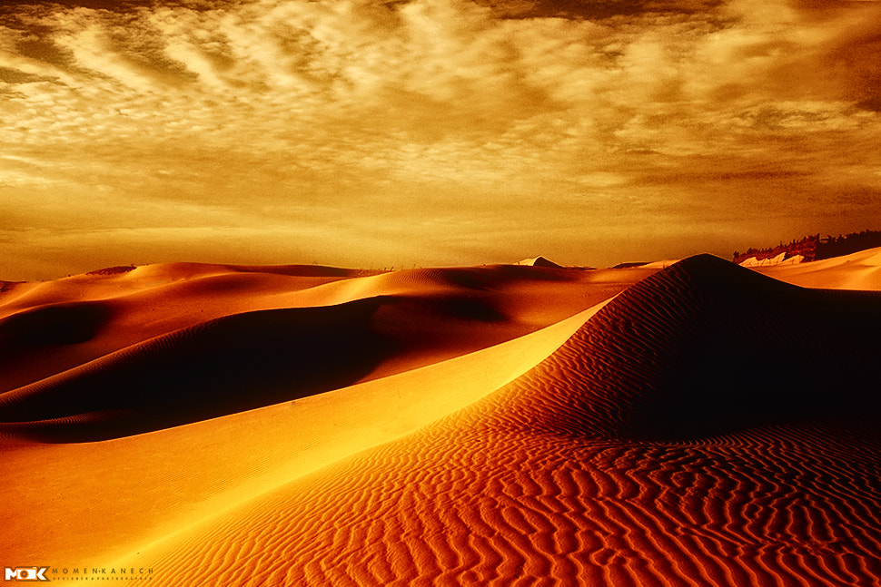 Photograph  Desert by Momen Kanech on 500px