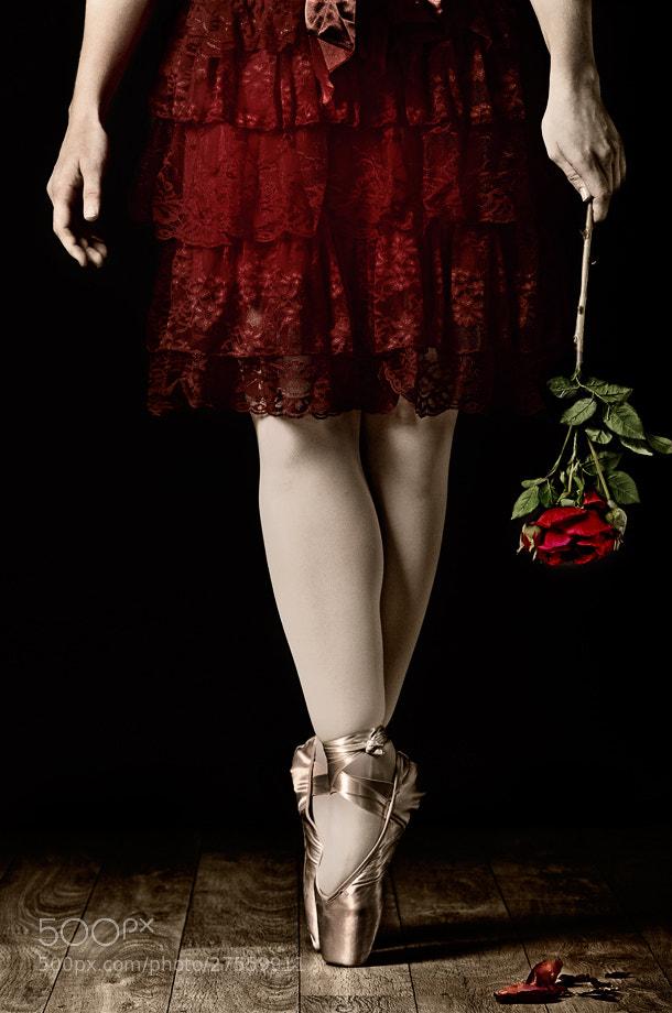 Photograph Ballerina... by Sabrina de Vries on 500px