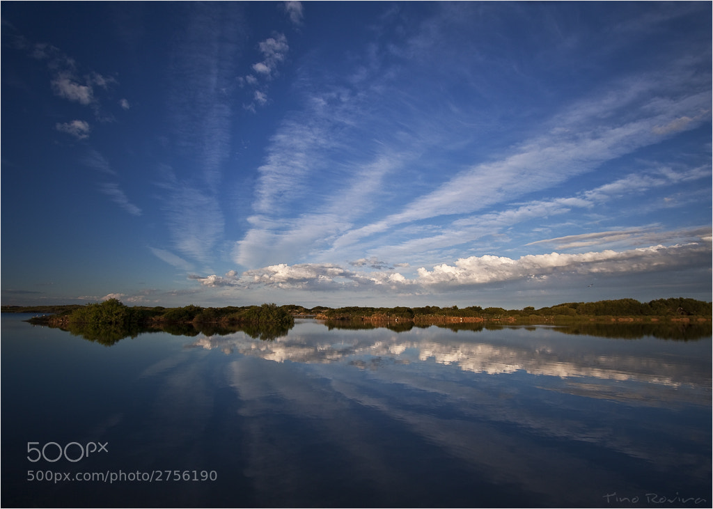 Photograph El lago by Tino Rovira on 500px