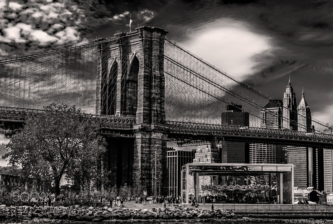 Photograph A NY Afternoon by Harold Begun on 500px