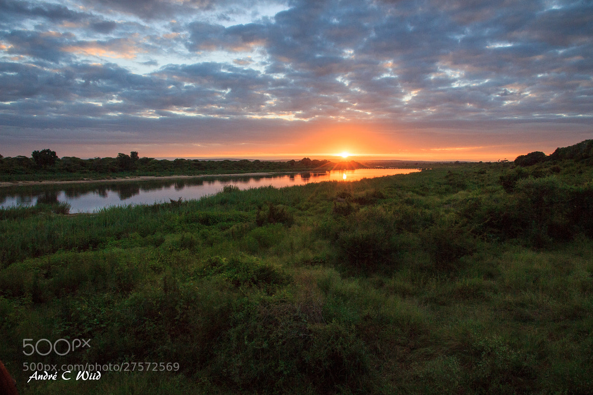 Photograph Sunrise at the Kruger by Andre Wiid on 500px