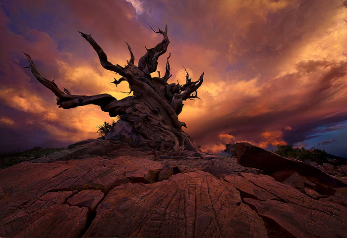 Photograph Rider of the Tempest by Marc  Adamus on 500px