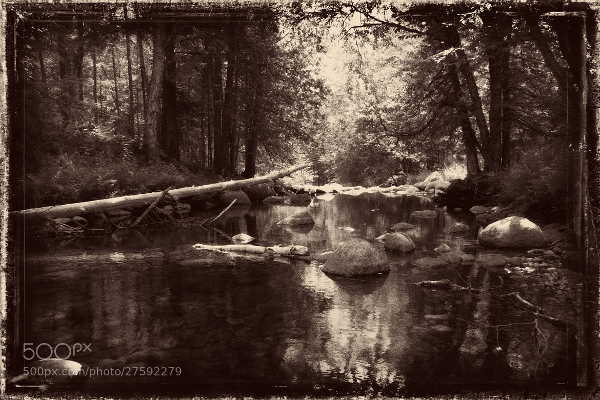 Photograph In the Woods Fishing the Stream by Matt H on 500px