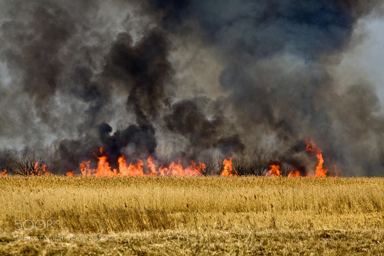 Photograph Fire by Balázs Nagy on 500px