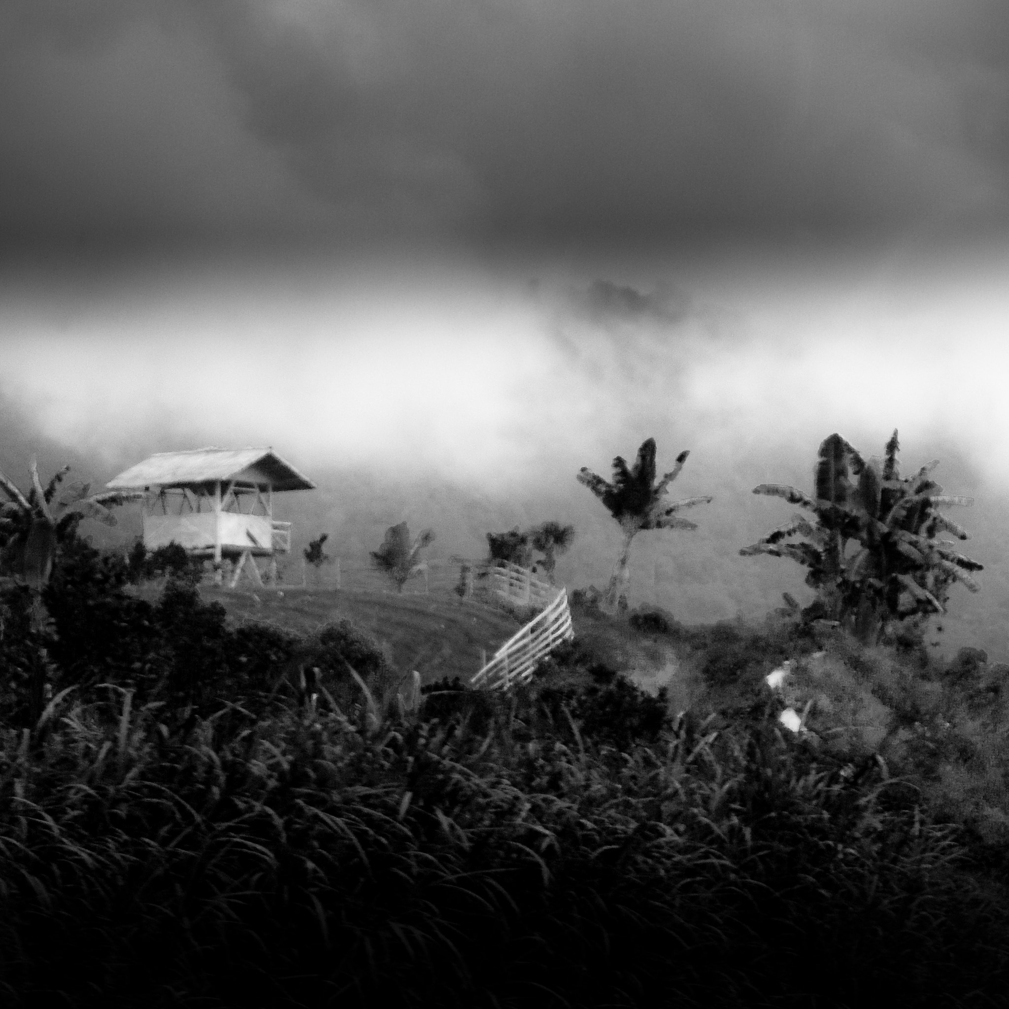 Photograph Hut in mist - Java by Olivier Bergeron on 500px