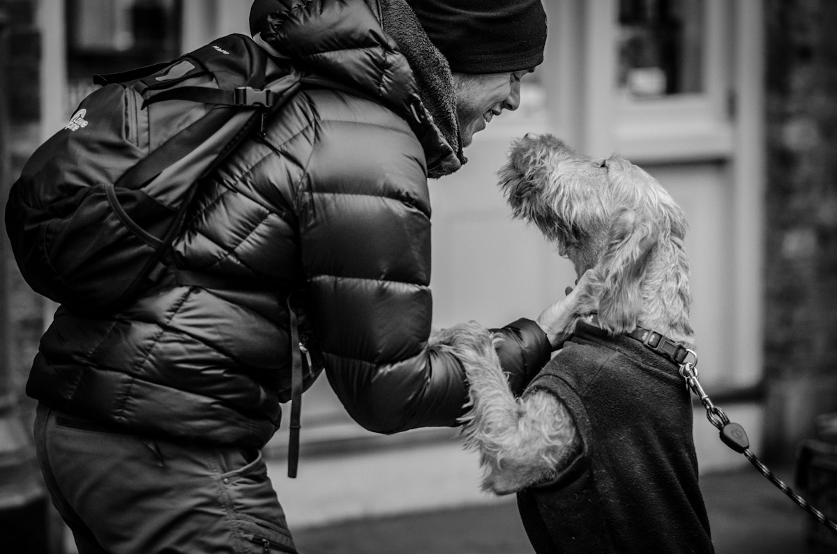 Photograph Puppy Love by Adam Patchton on 500px