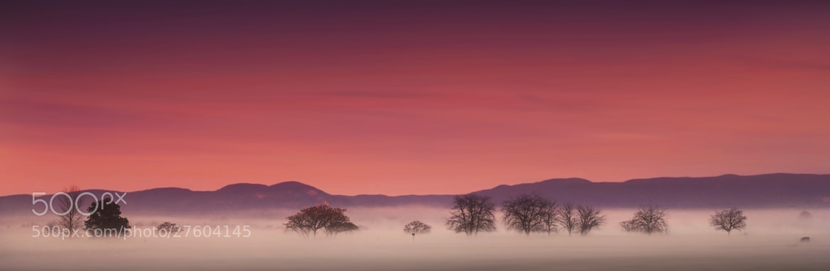 Photograph Dreamworks || HAWKESBURY by Rhys Pope  on 500px