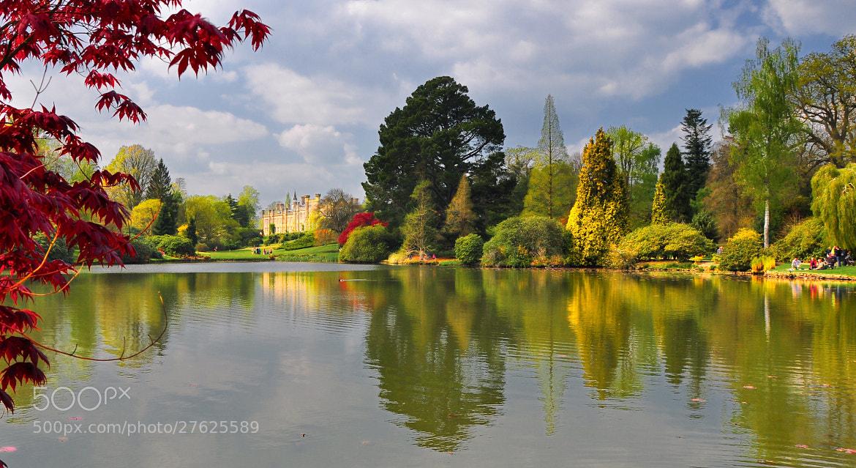 Photograph Fall - UK by Shuchun Du on 500px