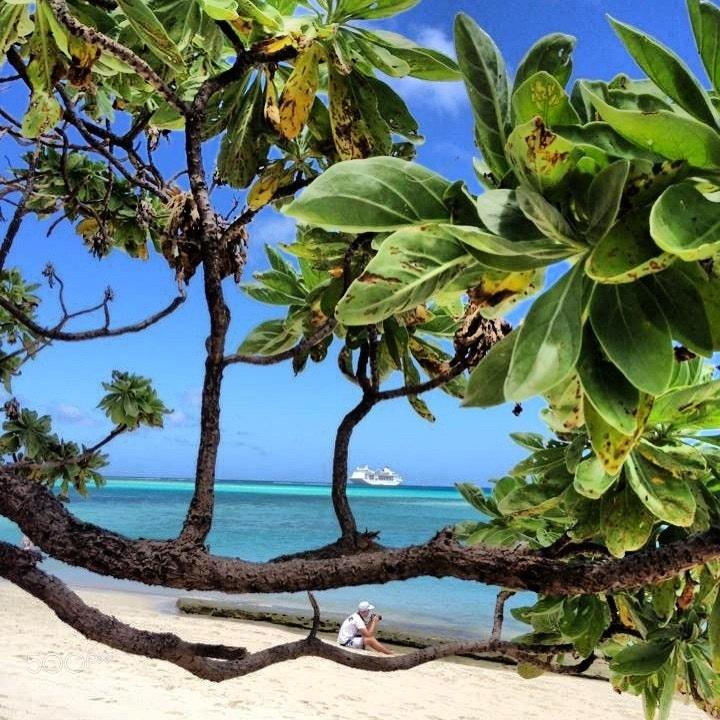 Photograph Mystery Island, Vanuatu by Karen J on 500px
