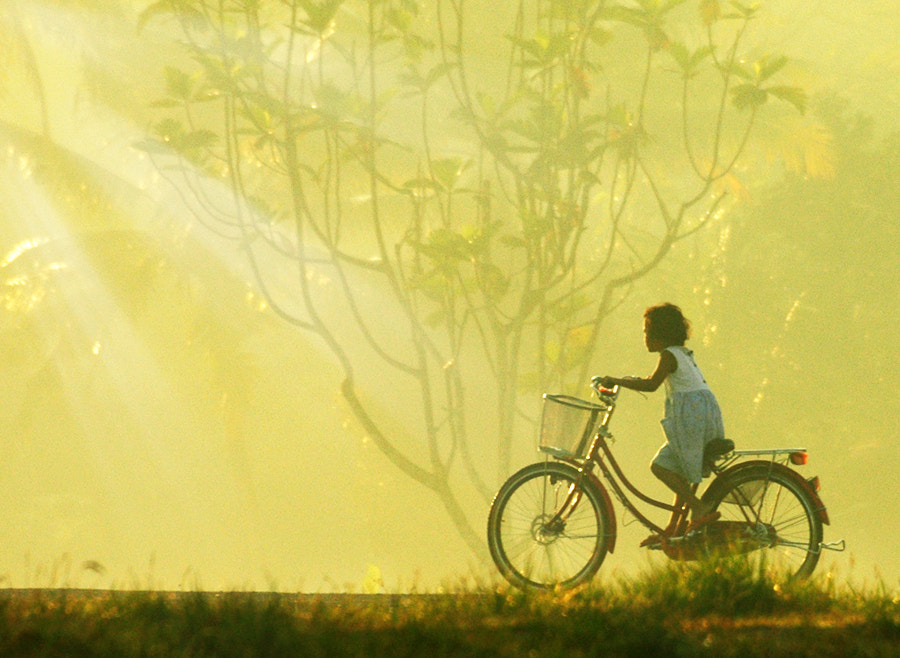 Photograph Morning Bike by Edi Wibowo on 500px