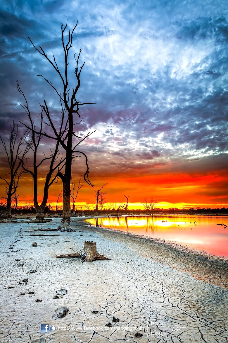 Photograph Day 6 - Kings Billabong, Mildura by Oat Vaiyaboon on 500px