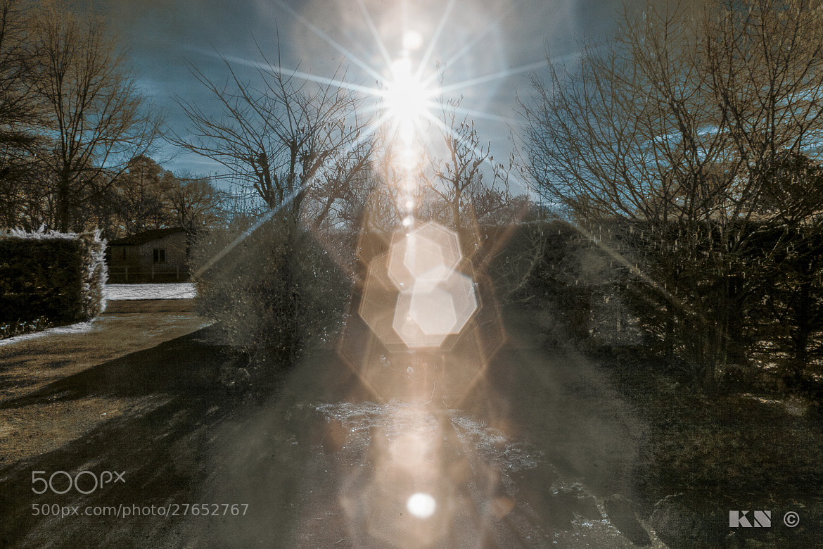 Photograph IR (InfraRed) Test by Kevinn Nicol on 500px