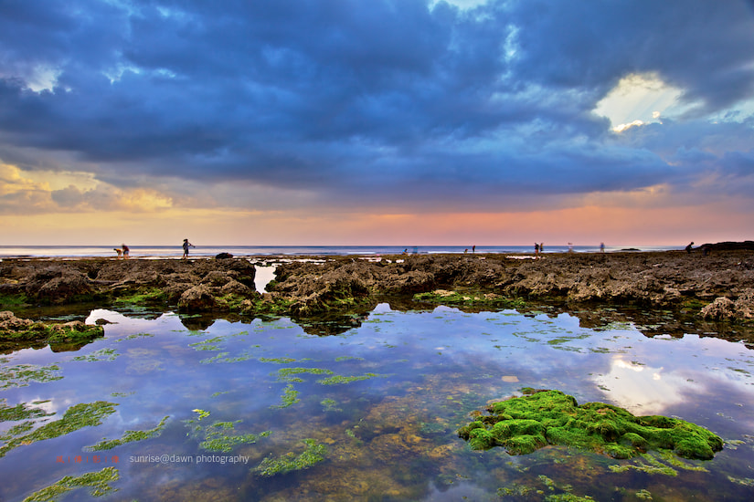 Photograph Coral Reefs in Spring 春之珊瑚礁 by SUNRISE@DAWN photography 風傳影像 on 500px
