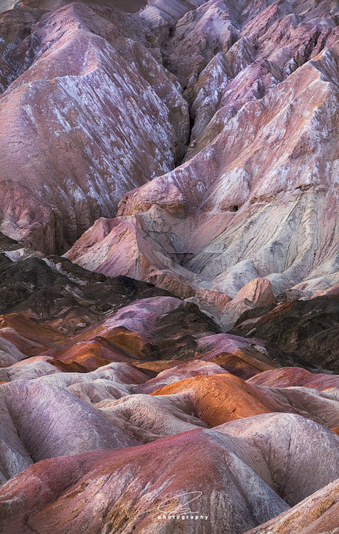 Photograph Pink by Ted Gore on 500px