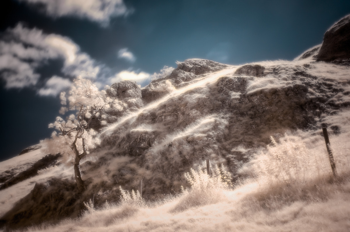 Photograph Infrared Hillside - Reworked by Sam Bentley on 500px