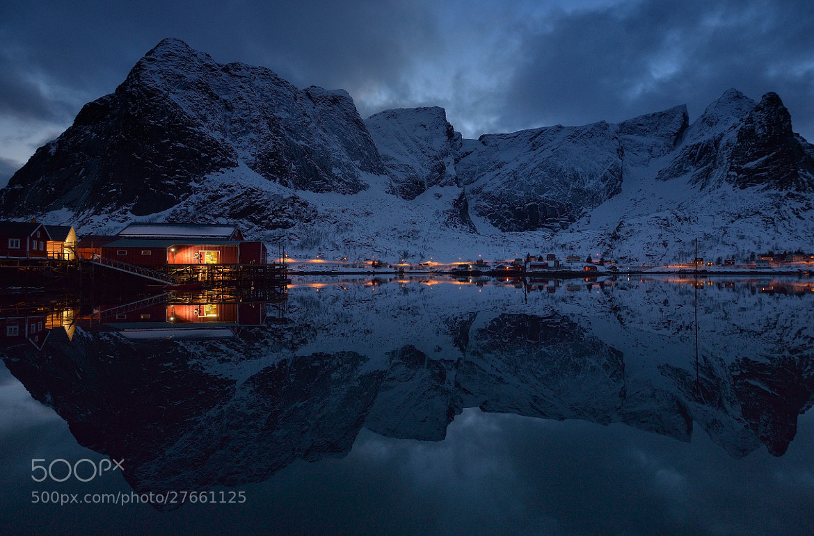 Photograph Reine by Costas Dumitrescu on 500px