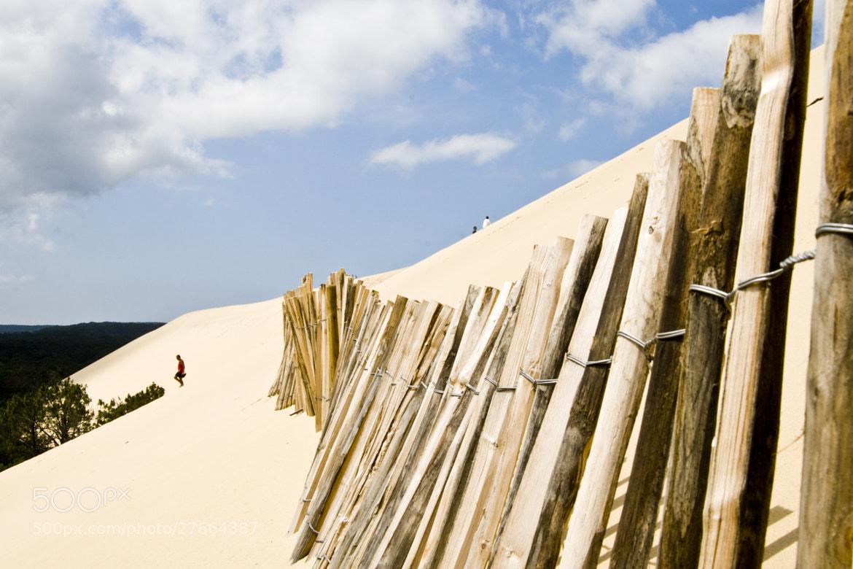 Photograph Dune de Pyla by tartarin on 500px