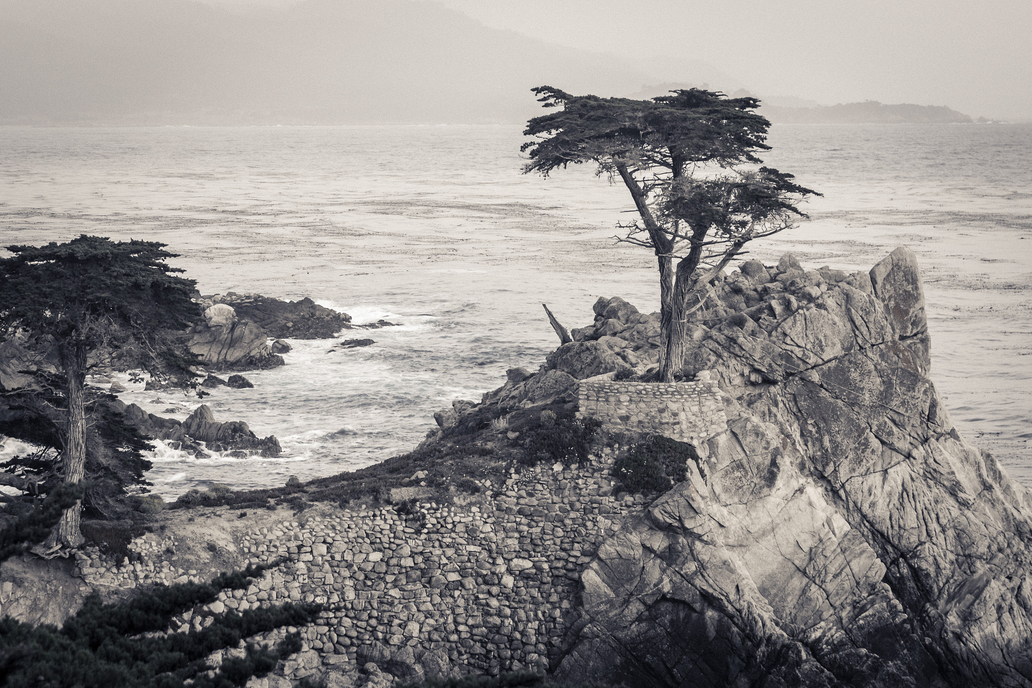 Photograph Lone Cypress by Jurijs Buts on 500px