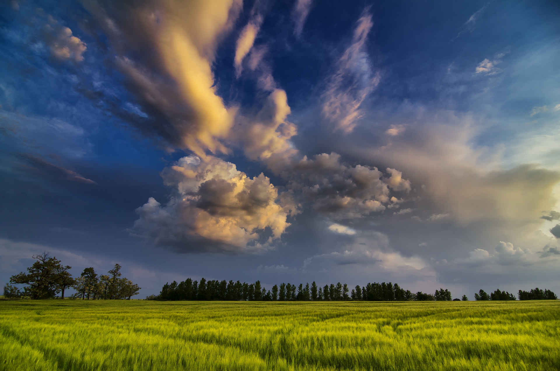 Photograph summertime by Alex Solich on 500px