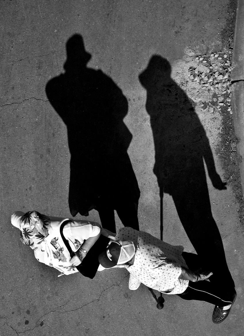 Photograph Conversation Between Shadows by Andrew K. on 500px