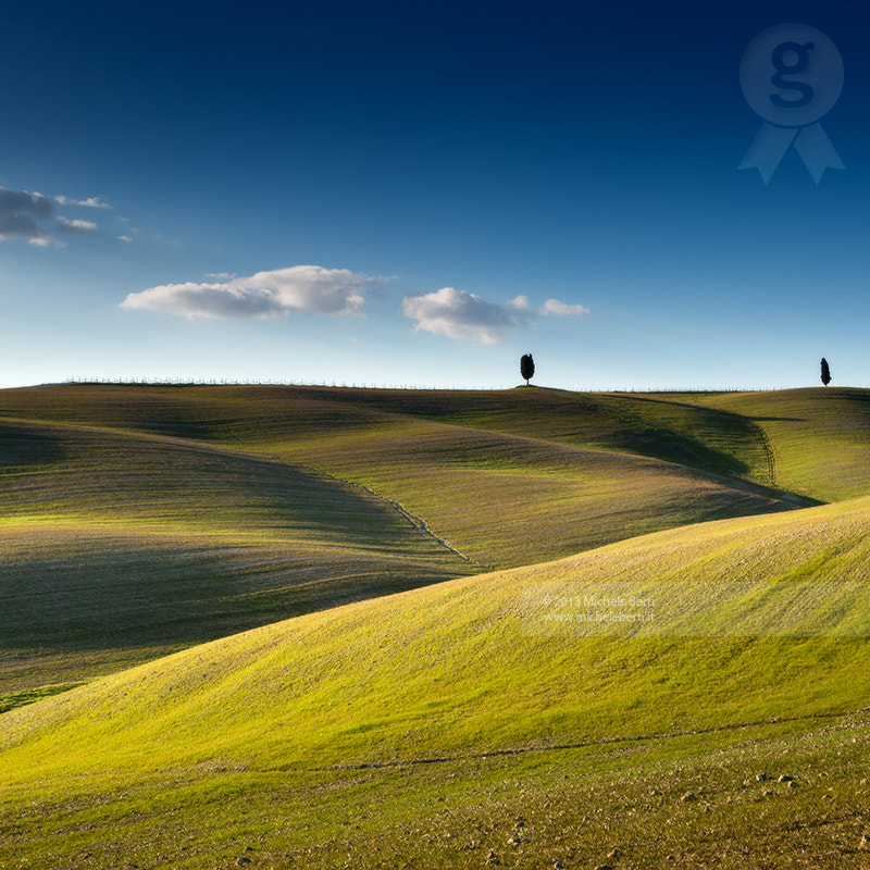 Photograph Trees on rolling hills #2 (Mar 2013) by michele berti on 500px