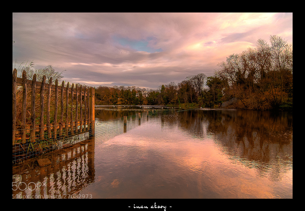 Photograph Hampstead Heath by Inan Aksoy on 500px