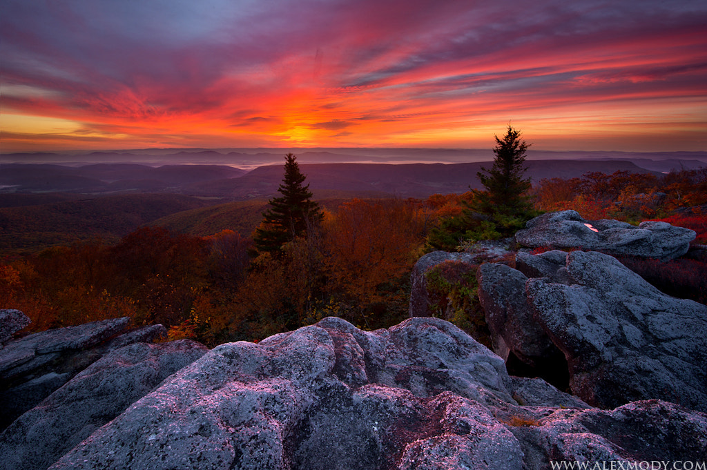 Photograph Autumn Sunrise at Bear Rocks by Alex Mody on 500px