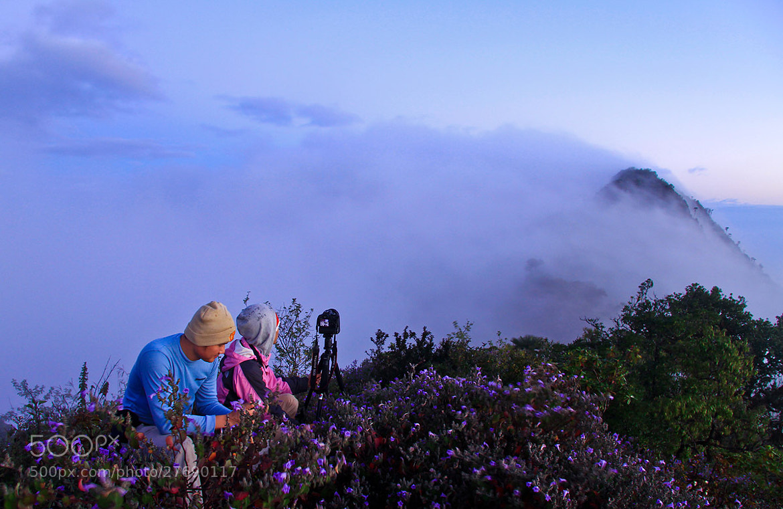 Photograph winter season by ทิวทิวา ภูตะวัน on 500px