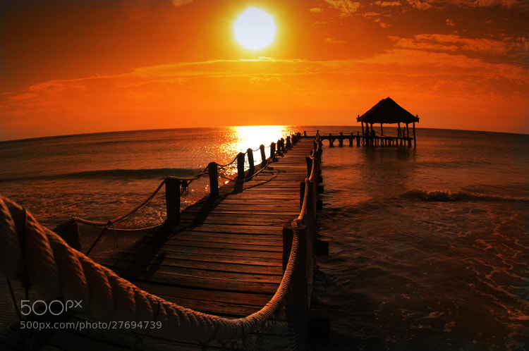 Photograph Dock To Paradise by Andew Osterberg on 500px