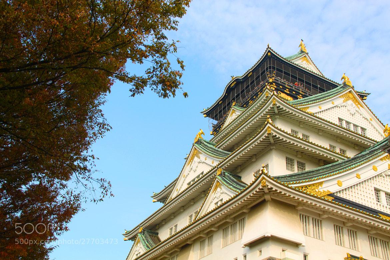 Photograph Osaka Castle - Osaka, JAPAN by sharon ang on 500px