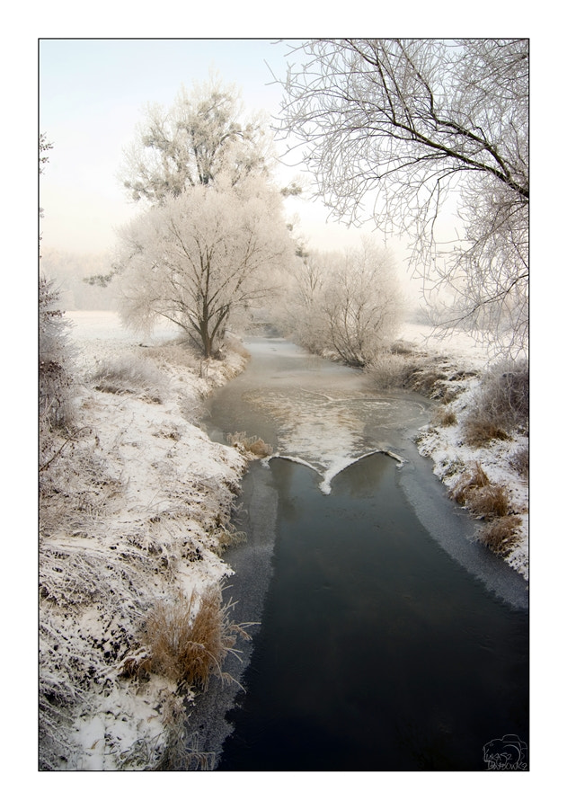 Photograph Winter river by Lukasz Dawidowicz on 500px