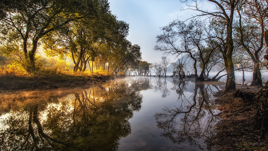 half-and-half by Tiger Seo on 500px.com