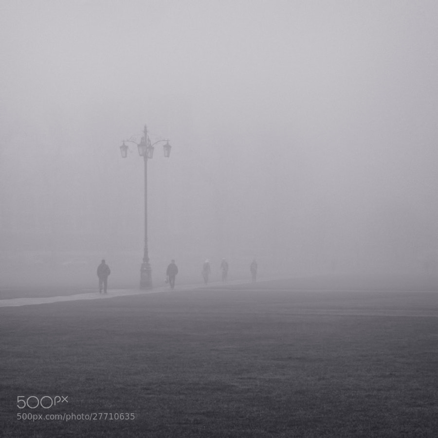 Reality Checkpoint In the fog